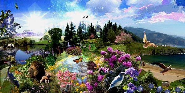 Paradise1a
