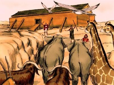 Noah Welcomes His Passengers