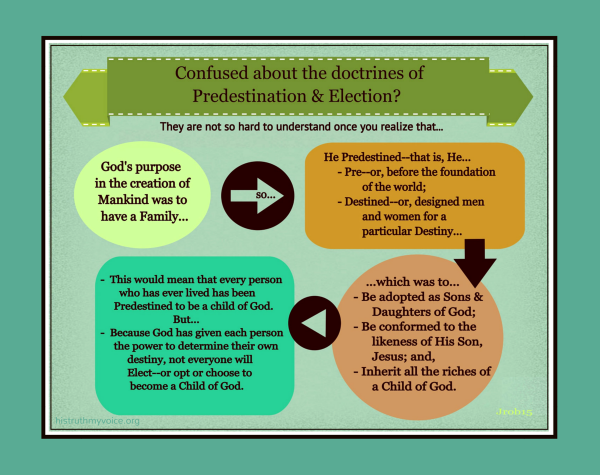 Understanding Predestination and Election