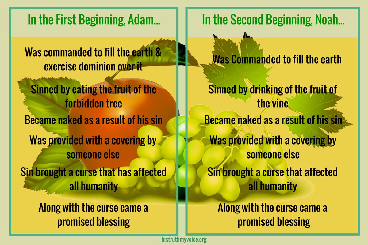 Adam versus Noah