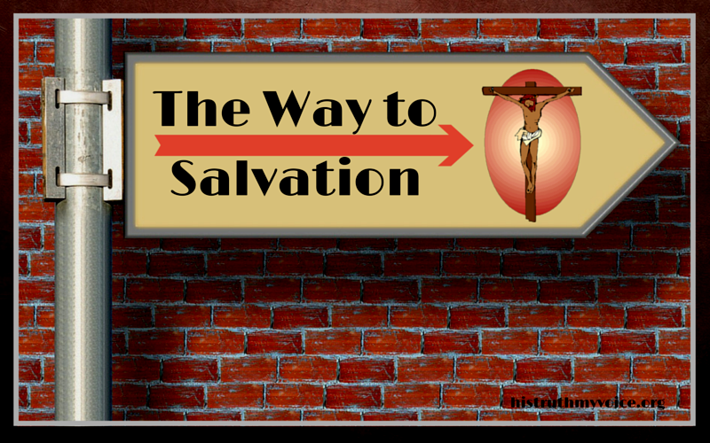 The Way to Salvation is through the New Birth